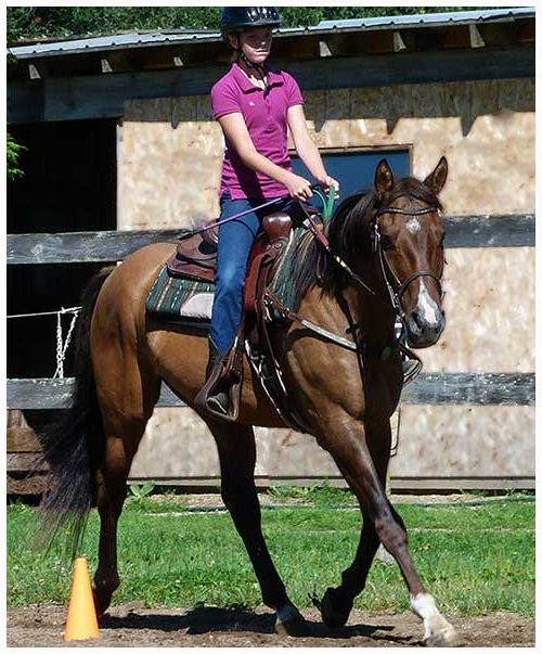 Ontario Horse Camps, Overnight Summer Riding Camp, Equestrian Horse