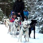 Dogs & Horses for March Break Camp!