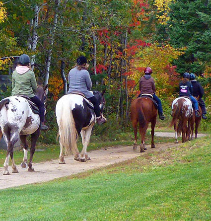 ontario-public-trail-riding-stables-near-Ottawa-Barrie-Toronto